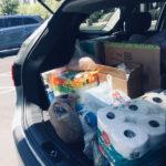 Ajutor necesar pentru rezidenții de vară de la UNLV